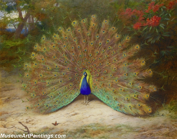 Famous Peacock Paintings Peacock and Peacock Butterfly