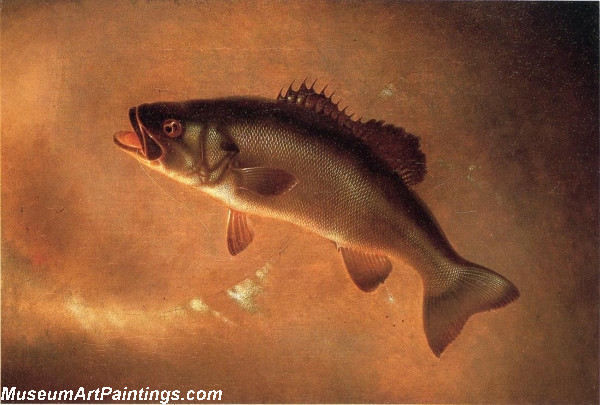 Fish Paintings Broadtail Bass
