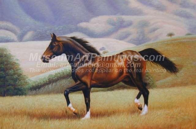 Horse Oil Paintings 020