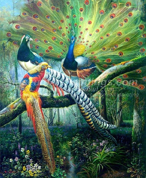 Peacock Oil Paintings 001