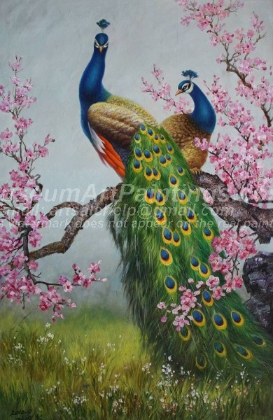 Peacock Oil Paintings 006
