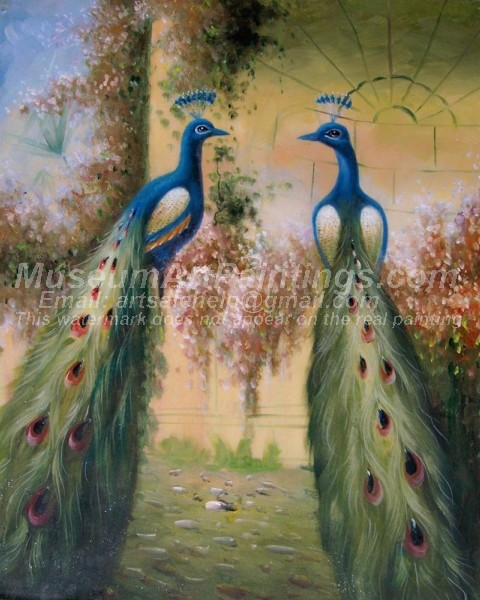 Peacock Oil Paintings 009