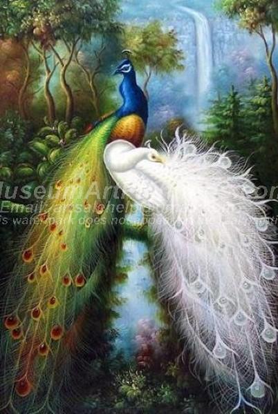Peacock Oil Paintings 013
