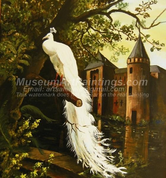 Peacock Oil Paintings 014