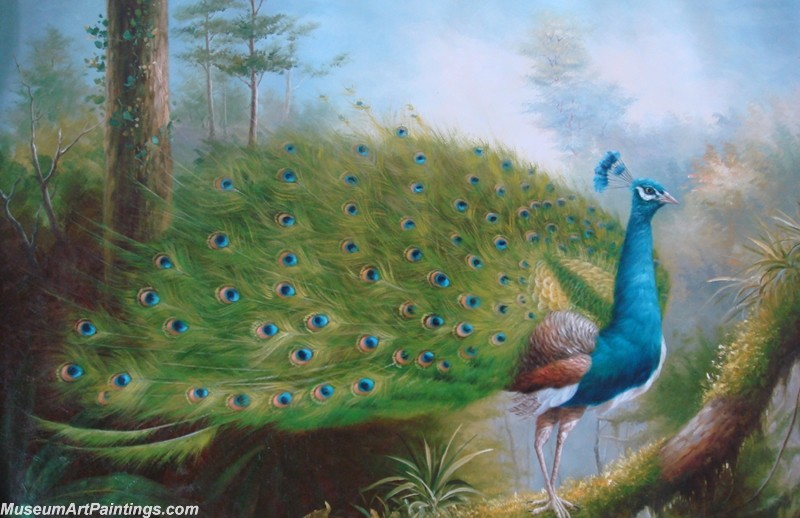 Peacock Oil Painting Beautiful Peacock Princess