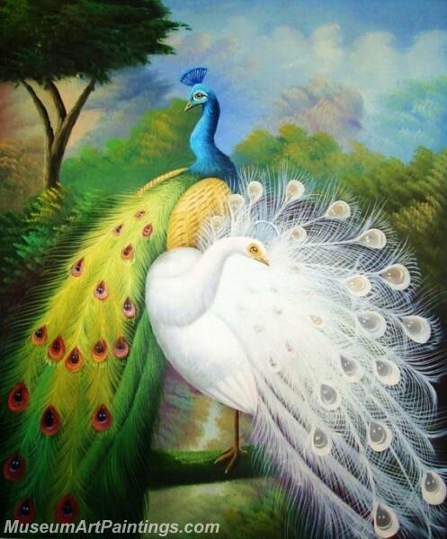 Peacock Oil Paintings PMP029