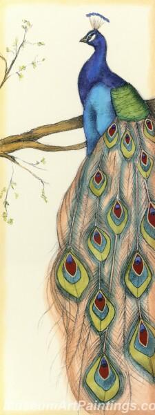 Peacock Oil Paintings PMP033
